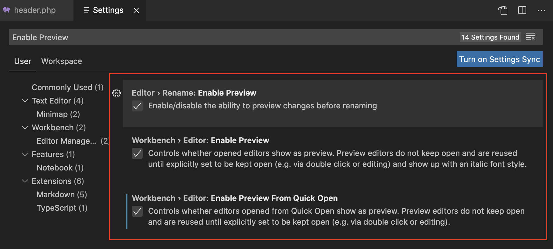 VSCode Enable Preview